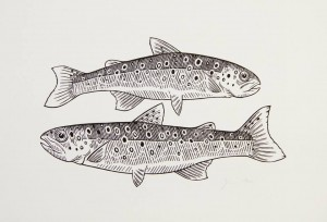 Graham Blair - Brook Trout